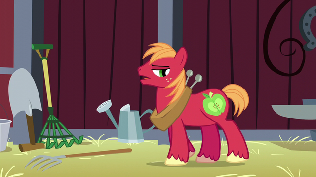 File:Big Mac denies feeling down S5E17.png