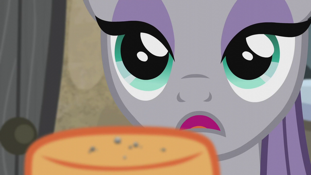 "File:Maud Pie ""it's a mountain rock"" S5E20.png"