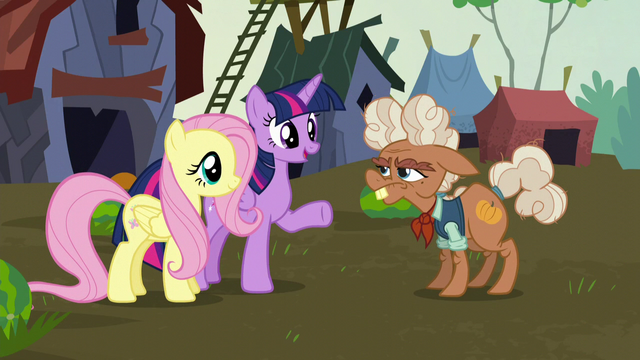 File:Twilight and Fluttershy meet Ma Hooffield S5E23.png