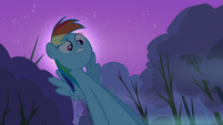 "Rainbow Dash ""And then"" S3E6"