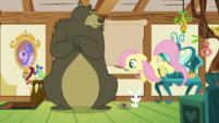 Fluttershy closing another windowshade S5E21