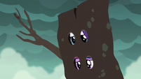Twilight and Rarity in a log looking worried S6E5