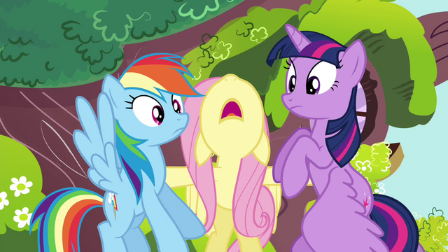 "File:Fluttershy tells Rainbow and Twilight to ""Stop!"" S4E21.png"