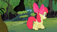Apple Bloom following S2E06