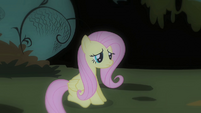 Fluttershy banished S01E22