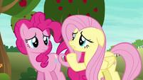 "Fluttershy ""most ponies have never even heard of"" S6E18"