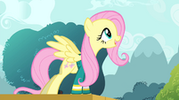 Fluttershy singing her heart out S4E14