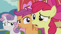 "Apple Bloom ""what's going on?"" S5E18.png"