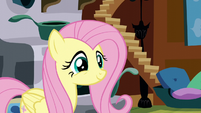Fluttershy kind smile S5E3