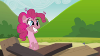 Pinkie Pie clone coming out of the tower remains S3E03