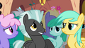 Nopony's getting sick on my watch S2E22.png
