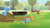 Trixie commands Snips and Snails to stop S3E05