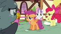 """Apple Bloom """"since you can do everything"""" S6E19.png"""