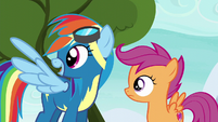 Rainbow Dash explaining to Scootaloo S6E7