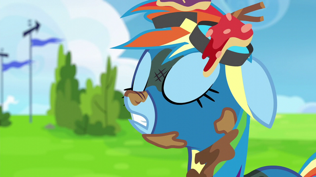 "File:Rainbow Dash ""just testing you guys"" S6E7.png"