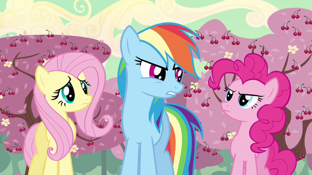 File:Rainbow Dash I don't know S2E14.png