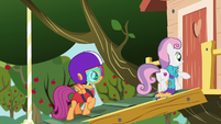 Sweetie Belle and Scootaloo entering the clubhouse S6E4