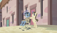 Unmarked barber pony watching the Mane Six S5E1