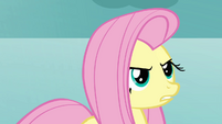 Fluttershy keeps to her promise S03E10