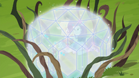 Rarity and Applejack in a diamond bubble EG4