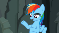 "Rainbow Dash ""They don't like it"" S2E07"