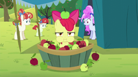Apple Bloom in an apple bucket S5E17