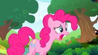Pinkie Pie I'm not ruining S01E10