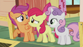 "Apple Bloom ""where do you think?!"" S5E18.png"