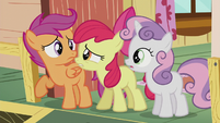 "Apple Bloom ""where do you think?!"" S5E18"