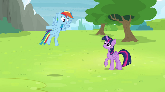 "File:Rainbow ""they want me to fly with them!"" S4E10.png"