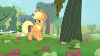 Applejack confused S4E7