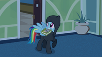 Rainbow Dash sneaking out 2 S2E16