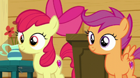 Apple Bloom and Scootaloo hear Sweetie Belle S6E4