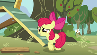 Apple Bloom asks her friends what their cutie marks are S5E4
