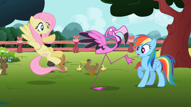 File:Fluttershy, Rainbow Dash and flamingo S2E07.png