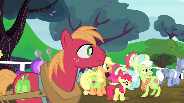 File:The Apples looking at where the ponies are heading to S4E20.png