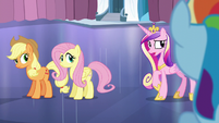"Cadance ""And try not to mention the Crystal Heart"" S6E2"