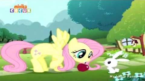 My Little Pony Friendship Is Magic - theme song (Turkish, season 2–)