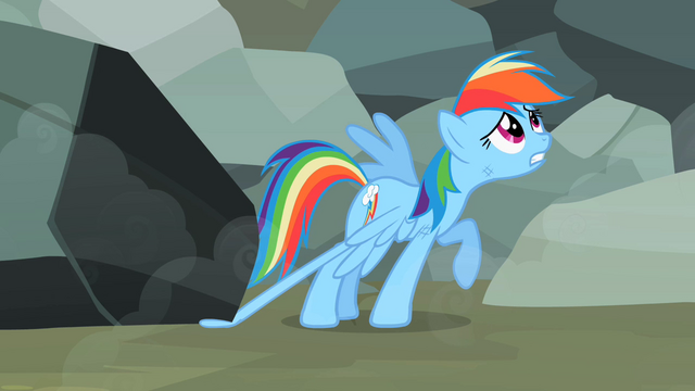 "File:Rainbow Dash ""I don't want"" S2E07.png"