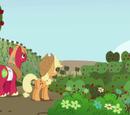 Apfelschüttelernte