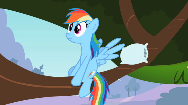 File:Rainbow Dash realizes reality S2E7.png