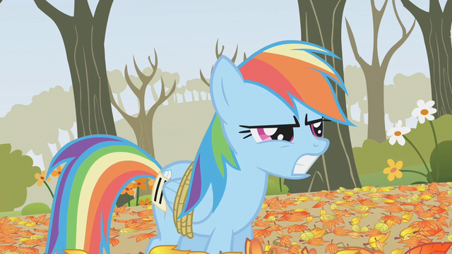 File:Rainbow Dash thinks Applejack tripped her S1E13.png
