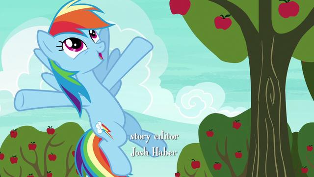 """File:Rainbow Dash """"teamwork..."""" S6E18.png"""