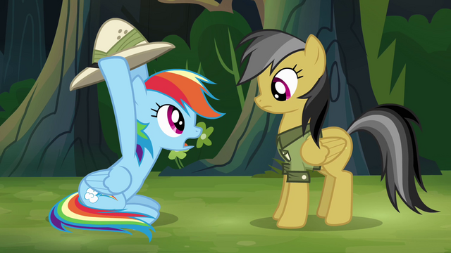 "File:Rainbow and Daring Do ""stop!"" S4E04.png"