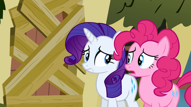 File:Rarity is she serious S2E19.png