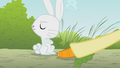 Angel refusing Fluttershy's carrot S1E07.png
