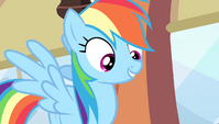 "Rainbow Dash ""that's the spirit!"" S4E24"