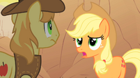 Applejack talks to Braeburn about her missing friends S1E21
