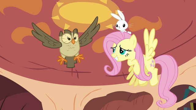 File:Fluttershy and Owlowiscious in the air S03E11.png