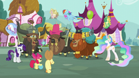 Yaks playing with ponies S5E11